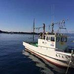 ルアー釣りで釣れるポイント紹介!この見極めが釣果を左右する