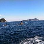 徳島県牟岐町津島のメジナ釣りでまさかの穂先が・・・・ショックだ